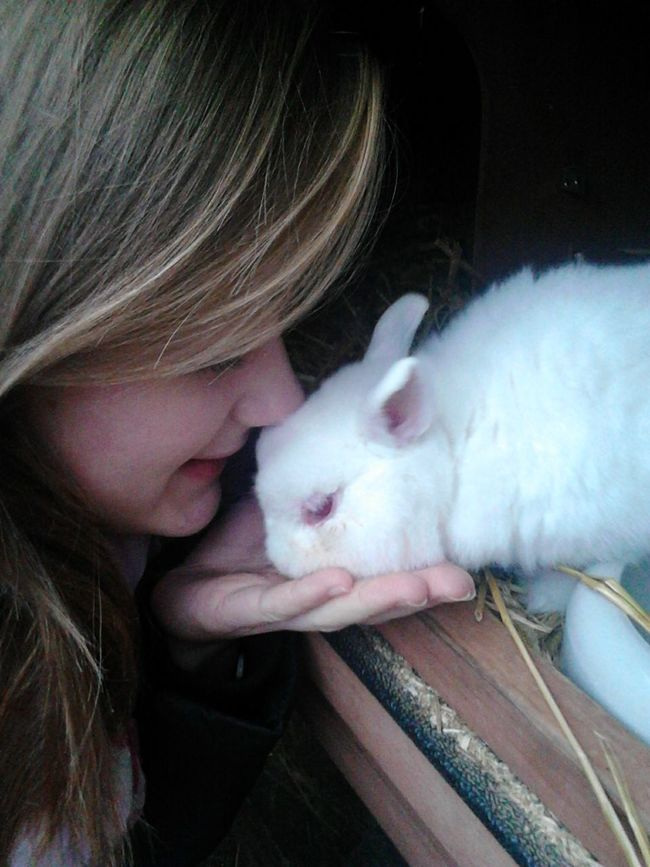 will never forget you ∞ My Rabbit Animal Love Mr Rabbit EyeEm Animal Lover Playing With The Animals Rabbit Animal Photography Bunny  Pets Animal_collection My Best Photo 2015