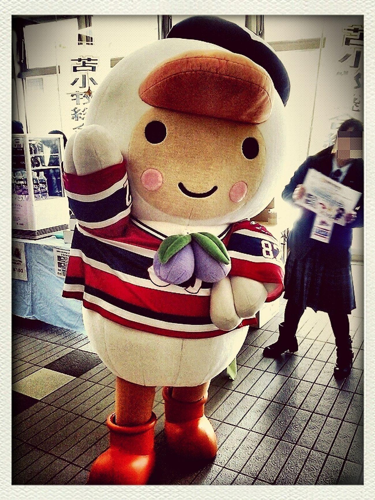 とまチョップ(・ω・)。 Hokkaido Japan Japaneselocalcharacters Tomachop