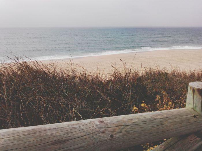Winterbeach Windowtothebeach Windowtothesea Beach Beachphotography Santacruz SantaCruzBeach Praiadesantacruz Praia Praiadonavio