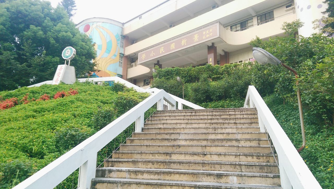 steps, staircase, steps and staircases, railing, outdoors, built structure, no people, day, architecture, tree, building exterior, grass, nature