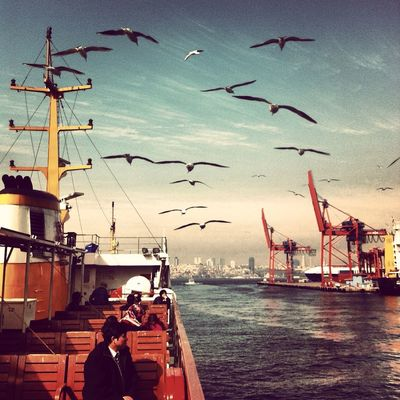 enjoying life in İstanbul by Koraykirca