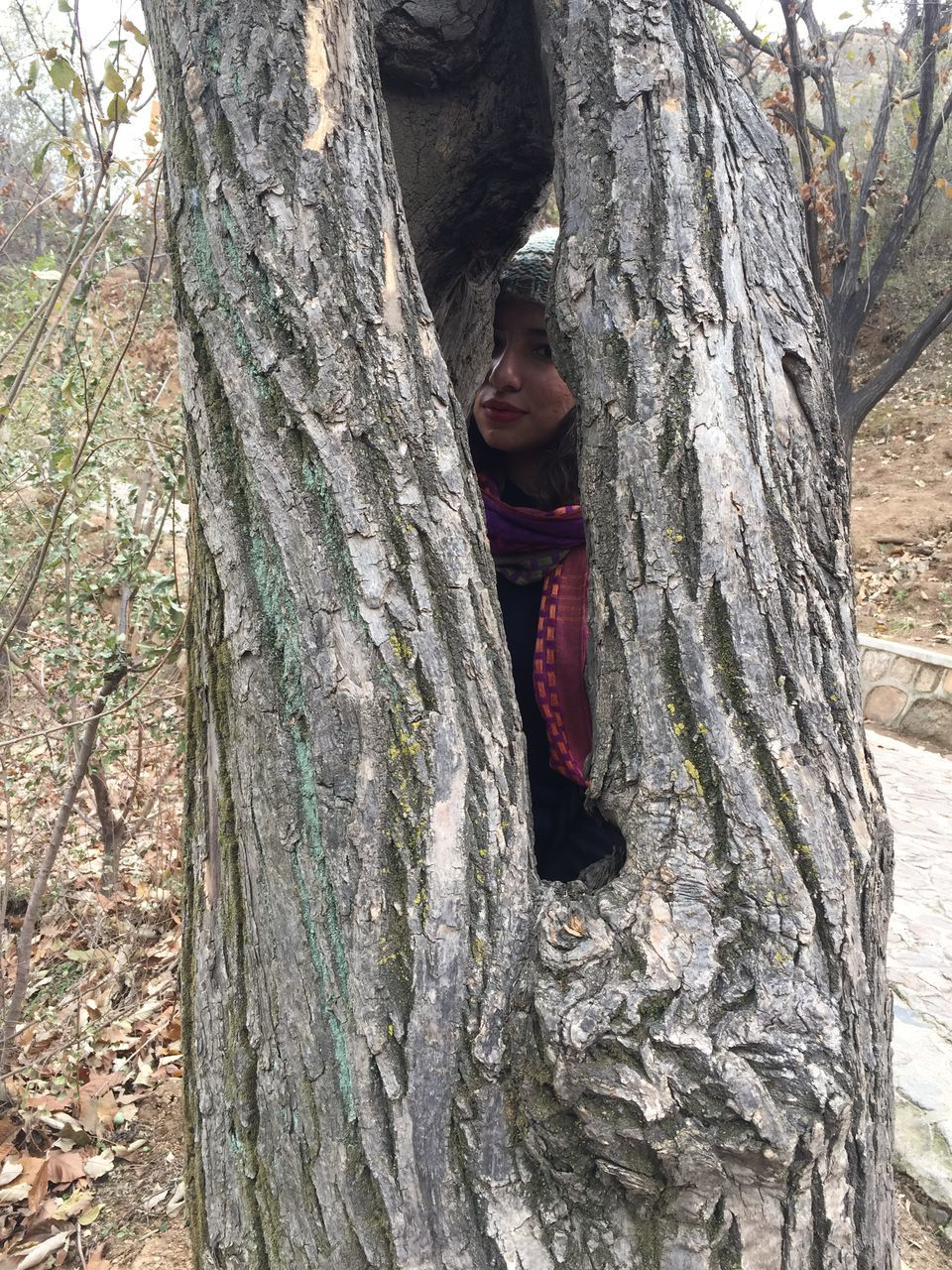 tree trunk, tree, leisure activity, hugging, real people, day, nature, one person, outdoors, bark, growth, textured, looking at camera, lifestyles, childhood, portrait, rope swing, smiling, branch, young adult, young women