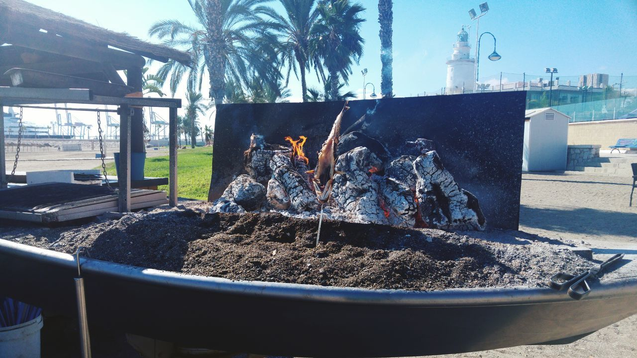 Outdoors Day Food And Drink Fish Sea Food Sea Mar Seafoods Healthy Eating Food Freshness Ready-to-eat Beachtime Beach Beach Time Malaga SPAIN Barbecue Plancha Coal Fire