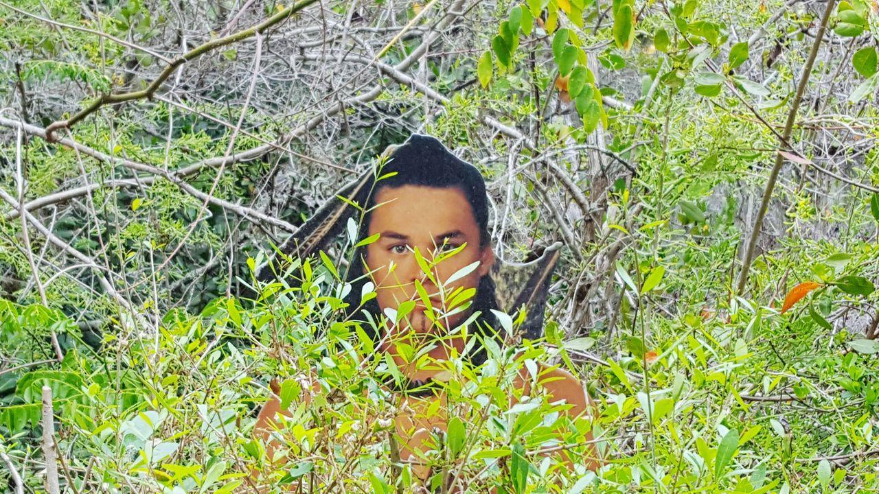 Indian cutout looking at me Indian CutOut Looking At Me Through The Bushes Desoto National Park Nature Walk Florida Life Bradenton FL