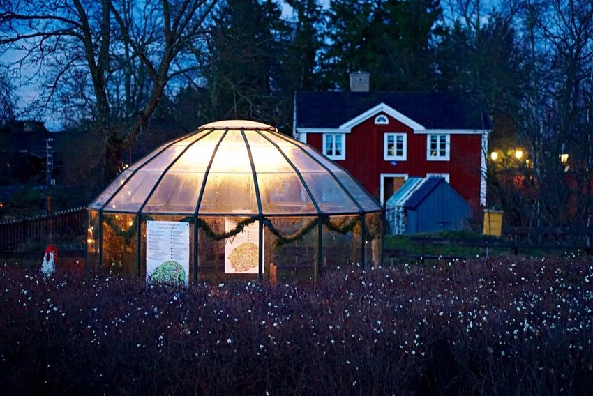 """""""Who loves a garden loves a green house too"""" - William Cowper Greenhouse Garden Light Evening Light Up Your Life Romantic Ambience - Traveling in Sweden"""