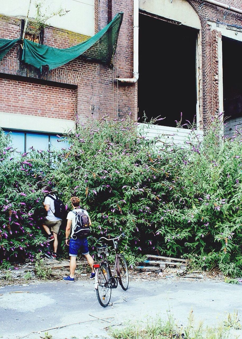 building exterior, built structure, architecture, outdoors, real people, day, two people, men, full length, togetherness, bicycle, plant, tree, people
