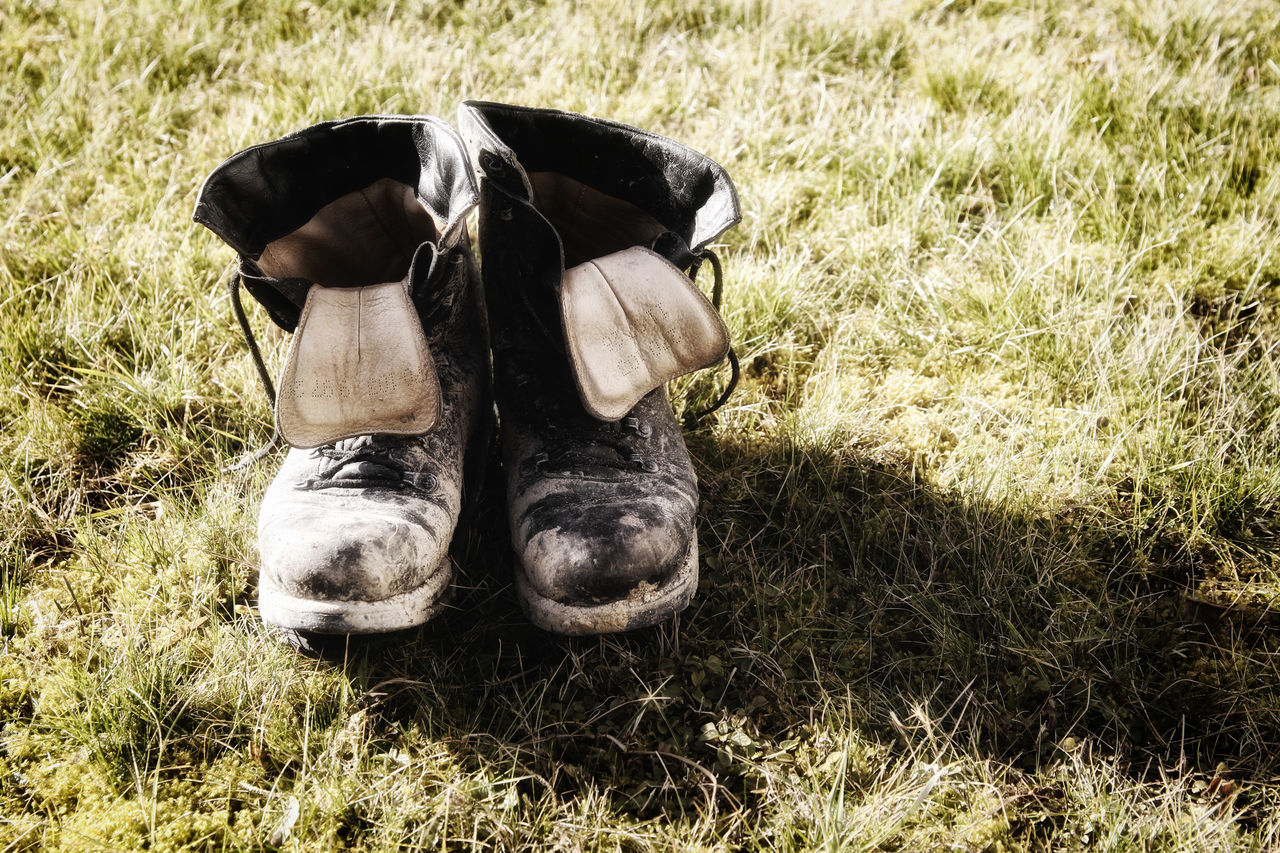 Old shoes Animal Themes Day Domestic Animals Field Grass Mammal No People Old Shoes Outdoors Shoes