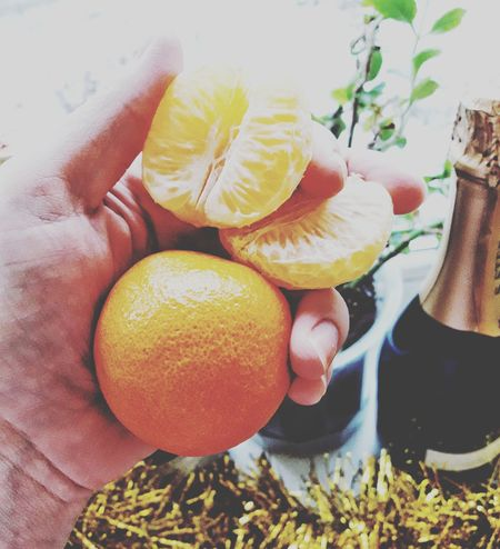Mary Christmas EyeEm Selects Food Stories Fruit Citrus Fruit Healthy Eating Freshness Food And Drink High Angle View Food Human Hand One Person Human Body Part Holding Indoors  Only Men Day Close-up People Nature