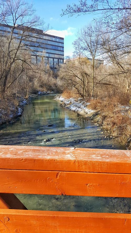 Bridge Cold Day ❄ Cold Winter ❄⛄ Creekside Dam Forrestwalk Nature No People Outdoors Park Pathway River View Snow Covered Trees Urban Nature Wetlands Winter