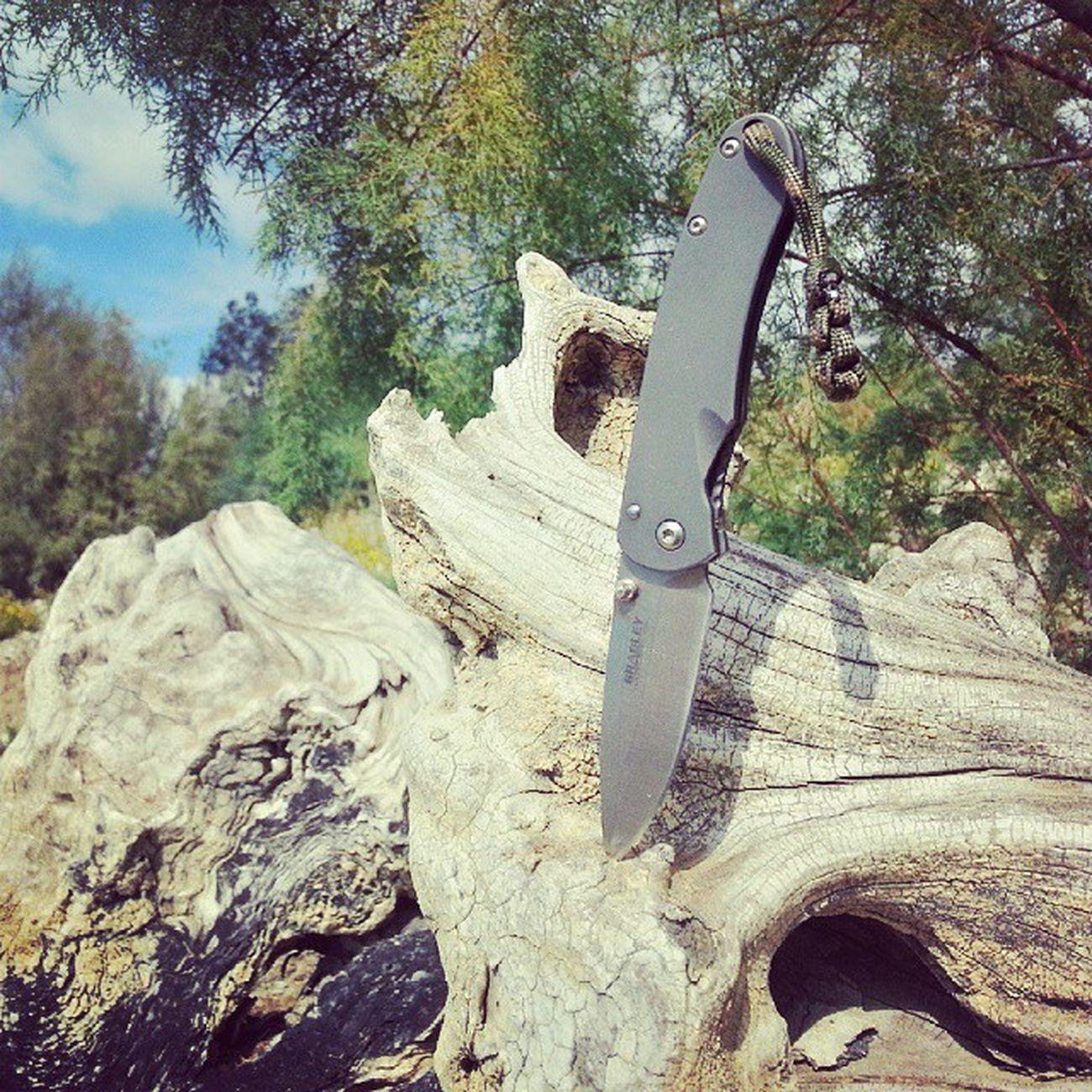 Bradleyalias Pocketknife EDC S30v