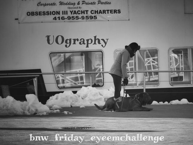 Candid Care ~ UOgraphy for Bnw_friday_eyeemchallenge Streetphoto_bw Bw_collection Eye4black&white  EE_Daily: Black And White B&w Street Photography EyeEm Best Shots Black And White Blackandwhite Shootermag Deceptively Simple Snapshots Of Life Photos That Will Restore Your Faith In Humanity Untold Stories Eye4photography  From My Point Of View It's Cold Outside Capture The Moment EyeEm_crew EyeEm Gallery EyeEmBestPics Street Photography Streetphotography Showcase: January