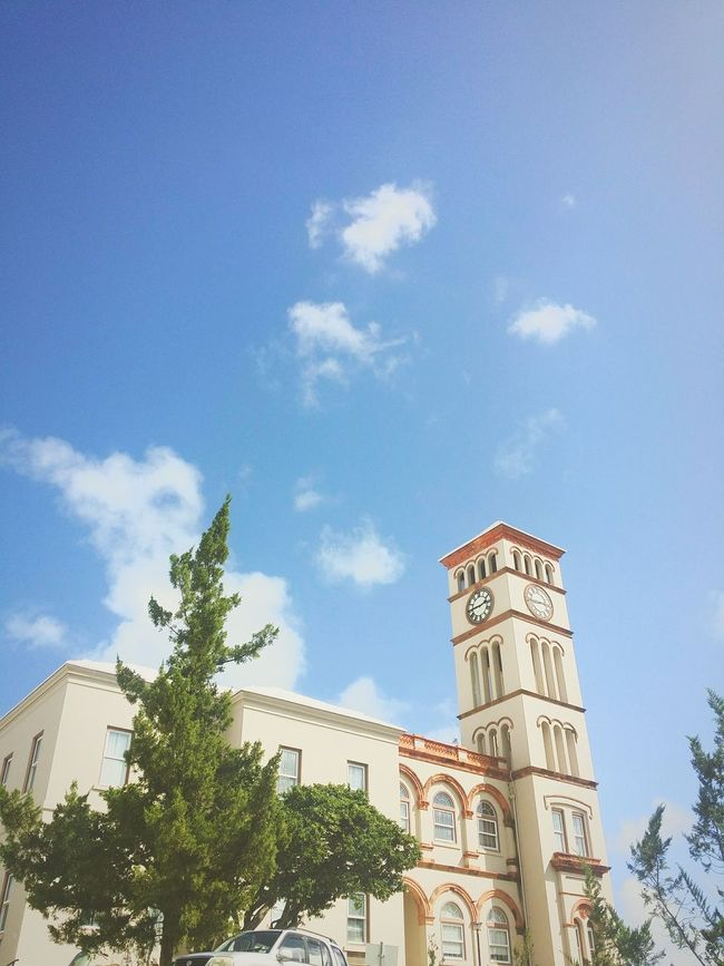 Architecture Building Exterior Built Structure Low Angle View Tree Blue Cloud Sky Tower Tall - High City Architectural Feature EyeEm EyeEm Best Shots Clear Sky Branch Sunny