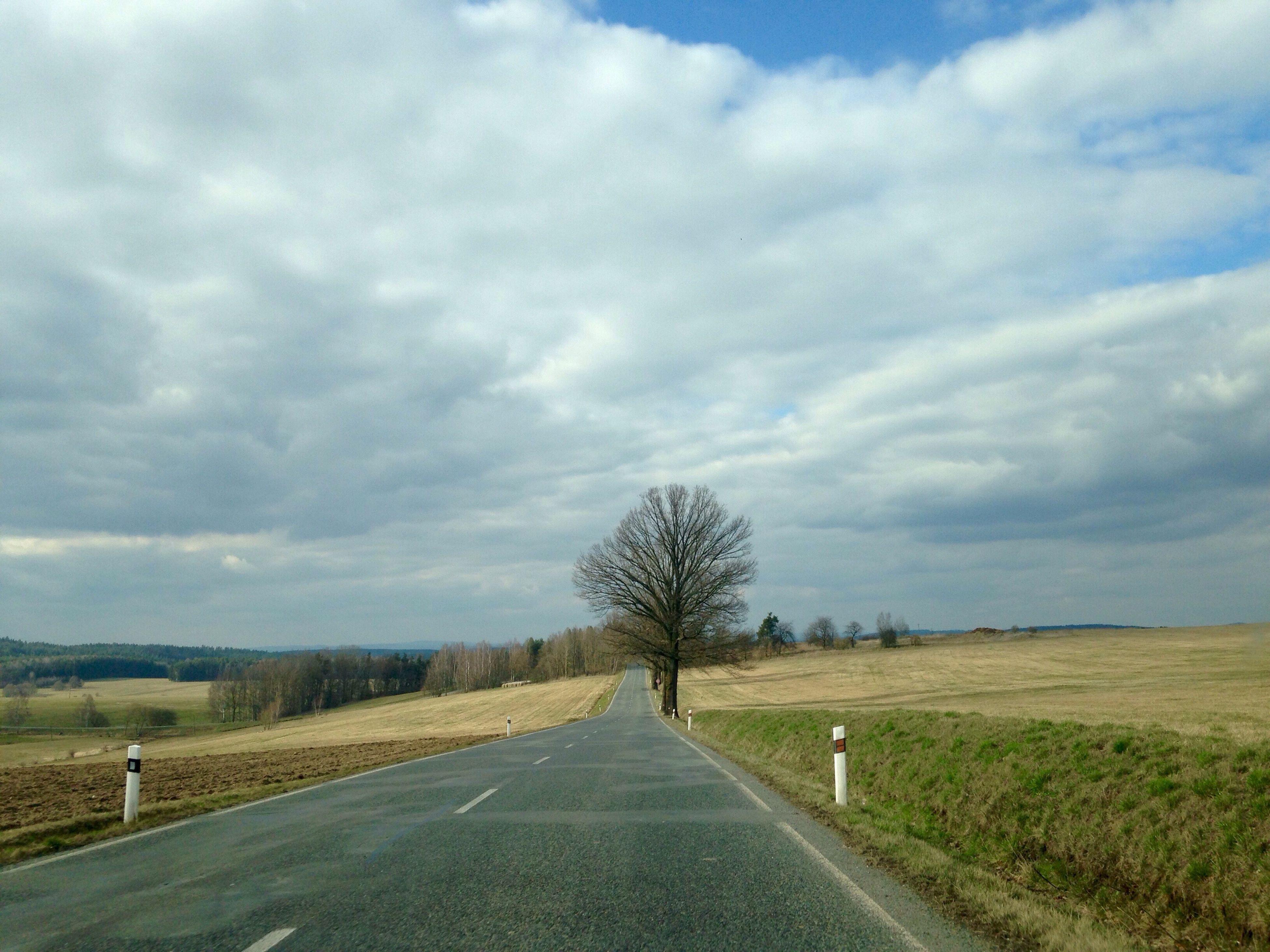 On Road 🛣🚙 Fieldscape 🌾🌳