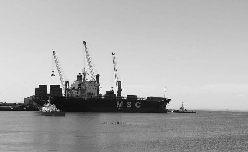 Nautical Vessel Sea Transportation Shipping  Day Offshore Platform Water Outdoors Harbor Tall Ship No People Nature Monochrome Photography Bird Horizon Over Water People Beauty In Nature Nautical Vessel Sea Transportation Water No People Commercial Dock Harbor Outdoors