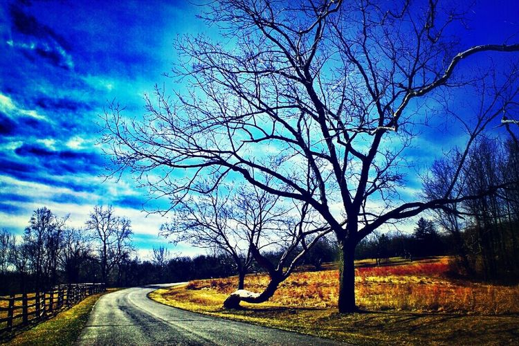 Photo Blue Sky Photography
