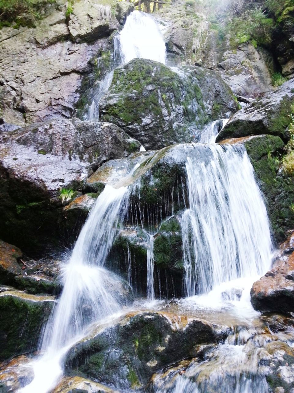 waterfall, water, motion, flowing water, long exposure, beauty in nature, rock - object, nature, blurred motion, scenics, no people, outdoors, day, forest, power in nature, freshness
