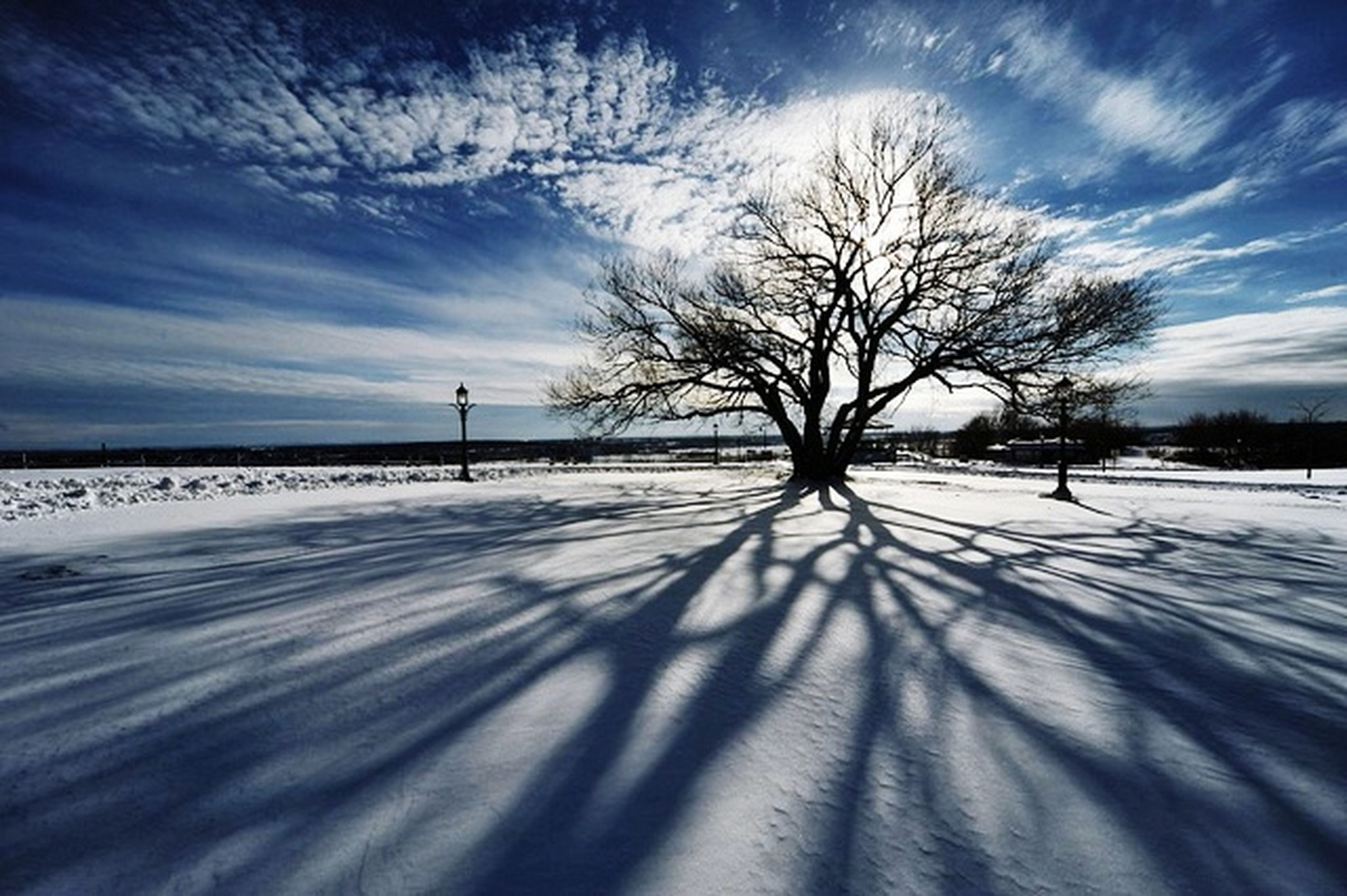 bare tree, sky, snow, winter, cold temperature, tree, cloud - sky, tranquility, tranquil scene, cloud, nature, beauty in nature, weather, scenics, landscape, season, cloudy, silhouette, field, road