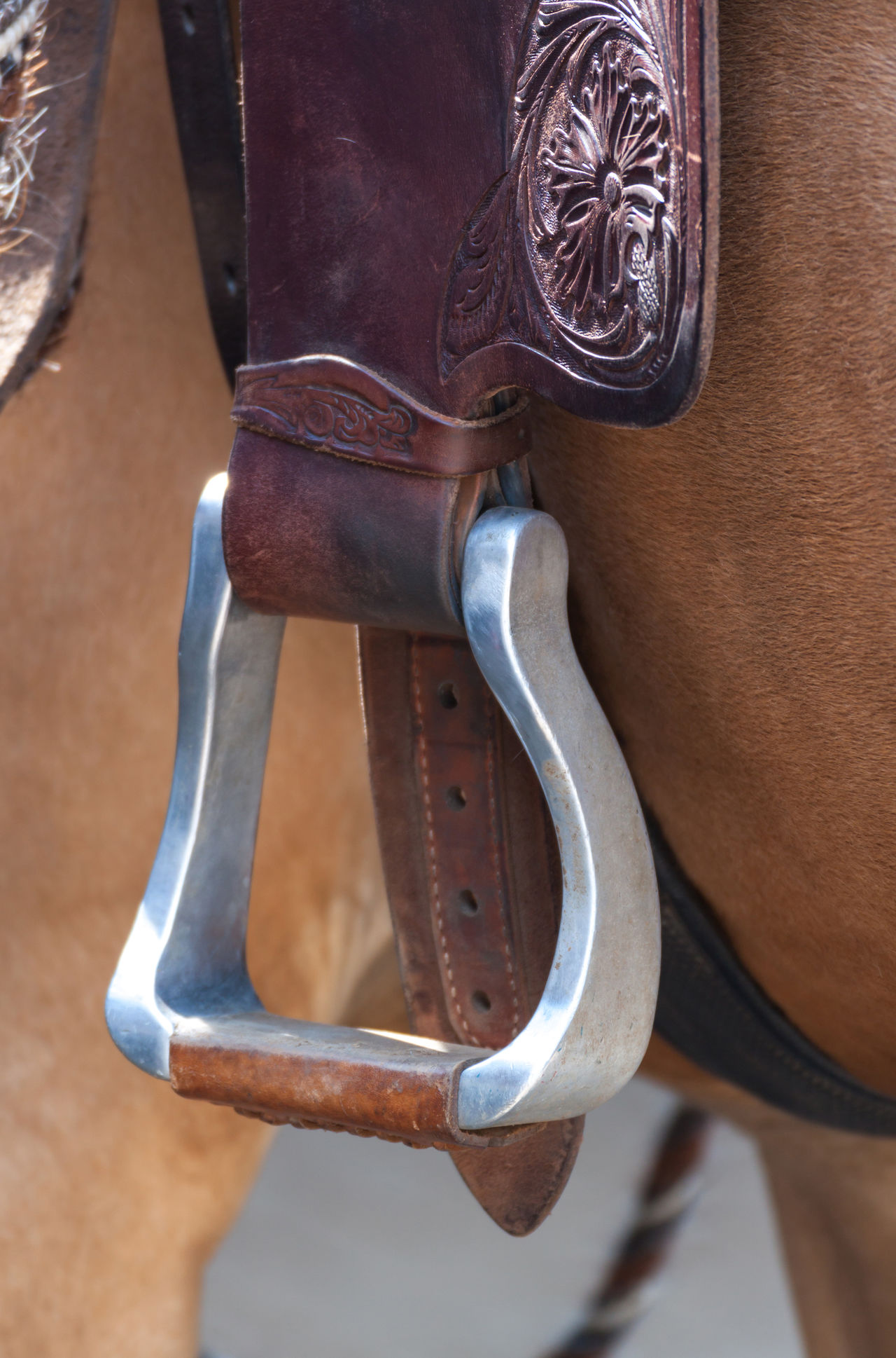 Brown Close-up Day Hanging Leather Leather Saddle Metal Riding Stirrup Stirrups Western Riding Western Style Wood - Material