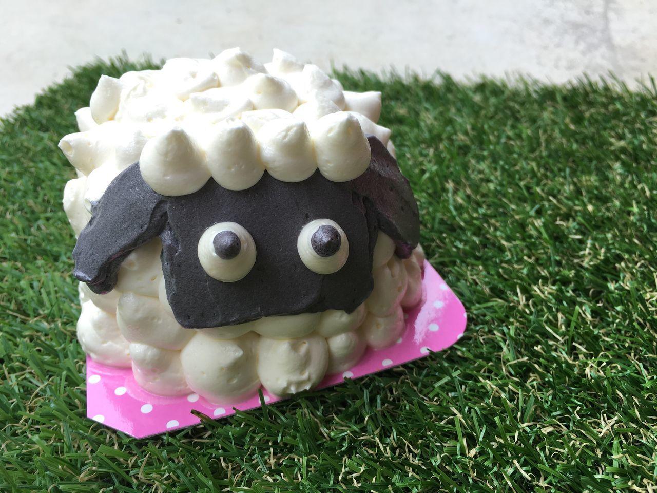 Sheep Cake Cake Birthday Grass Morning Free Time Coffee Break