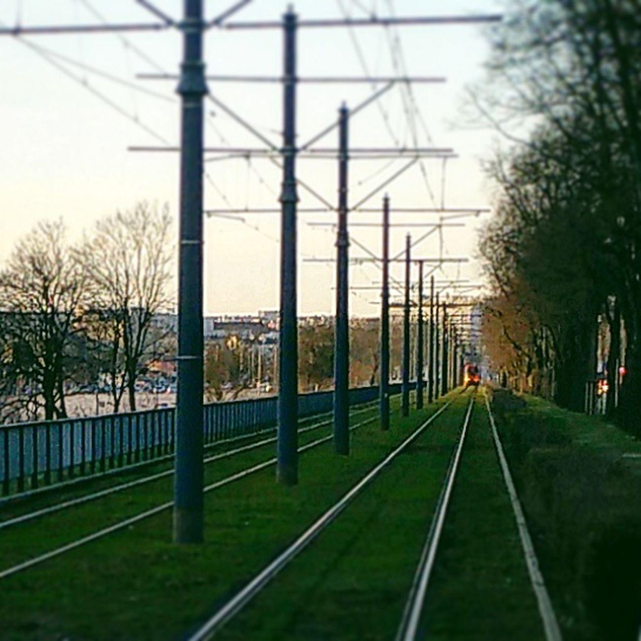 Tramwaj Tory Trawa Niebo Tram Track Grass Sky Streetphotography Streetfoto Warszawa  Warsaw