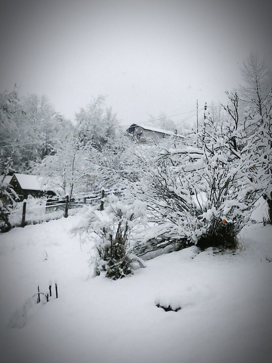 Country, Winter, Snow