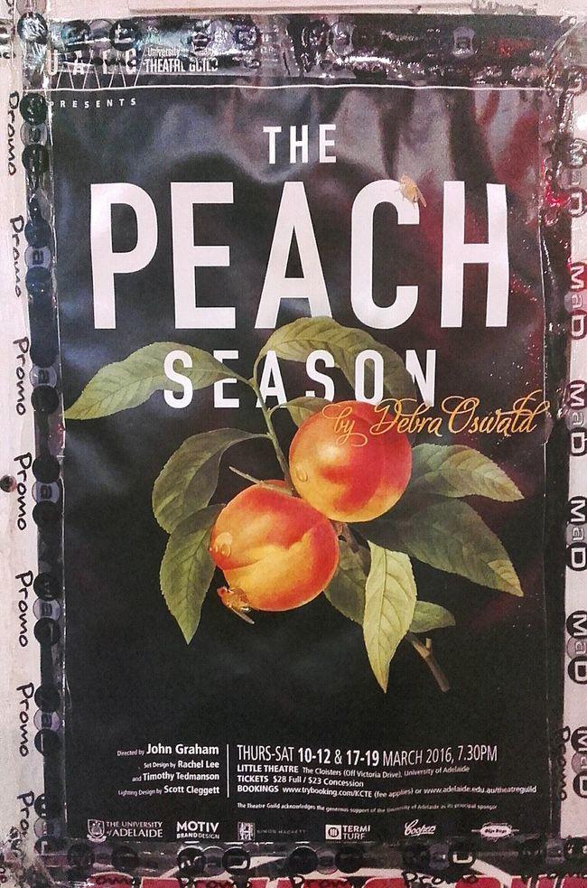 Peach Season Poster Peach Poster Art Peach! Posters Peaches Debra Oswald Posterart Poster! Posterporn Posterdesign Peach Orchards Poster Collection Colour Posters Posterwall Art Postercollection Poster Color ArtWork Artphotography Postercolor Poster Wall Wall Poster Color Posters