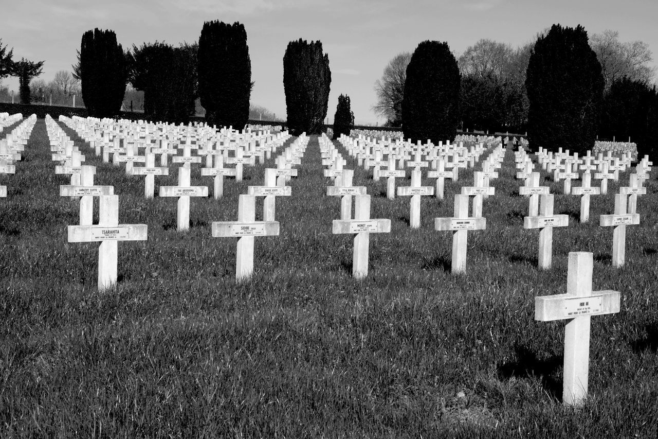 cemetery, tombstone, memorial, graveyard, gravestone, sadness, grave, the past, tree, cross, in a row, day, outdoors, army soldier, tranquility, spirituality, grass, nature, landscape, war, people