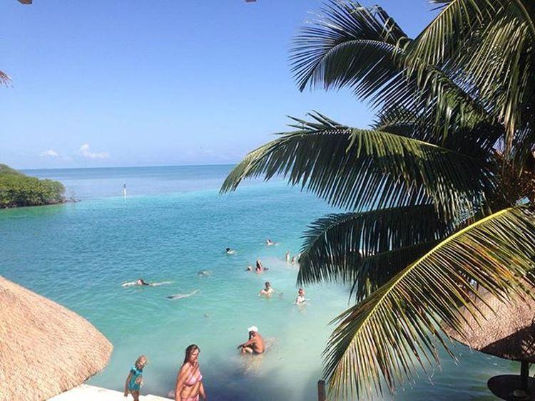 I've missed the sun. Not a bad lunch spot... Belize  Cayecaulker Notevenafilter