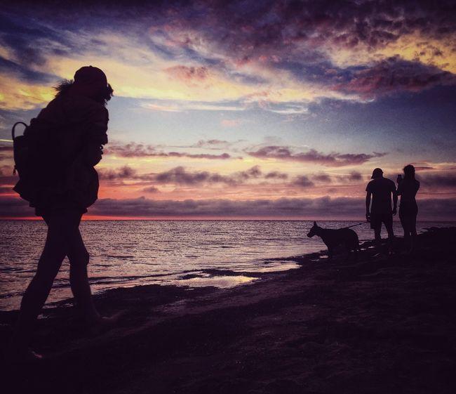 Sunset. Travel Photography EyeEm Masterclass The Essence Of Summer- 2016 EyeEm Awards Sunset EyeEm Nature Lover The Great Outdoors - 2016 EyeEm Awards Clouds And Sky Photography Landscape Eye4photography  From My Point Of View