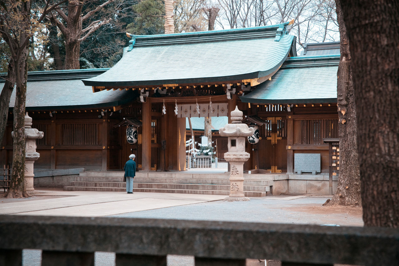 Architecture Bowing Built Structure Culture Day Japan Japanese Traditions Leisure Activity Lifestyles Outdoors Praying Shinto Shrines & Temples Spiritual Spirituality Temple - Building The Way Forward Tourism Traditional Travel Destinations Tree Showcase June