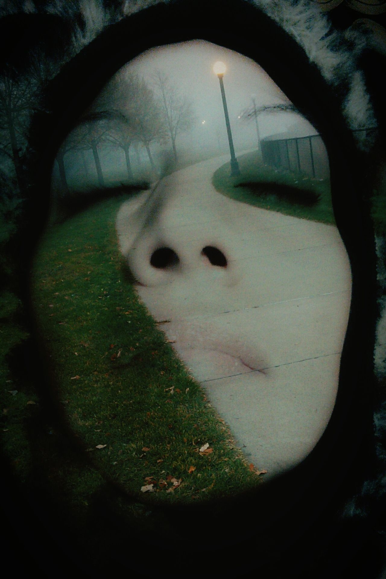 One Person Real People Human Body Part Close-up Lifestyles Double Exposure People Abstract Photography Gothic Beauty  Weather Photography Lane Sidewalk Vanishing Point Vertical Treeline Landscape Looking Up Layered Landscape Self Me Portrait Of A Woman Faces Of EyeEm