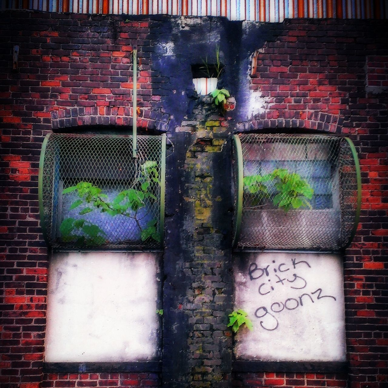 brick wall, built structure, architecture, outdoors, no people, pipe - tube, building exterior, day, plant, city