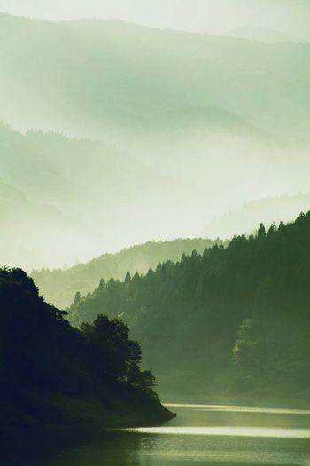 Lake Tree Mountain Countryside Nostalgia Sunset Japan Miyagi Nature Fog Water