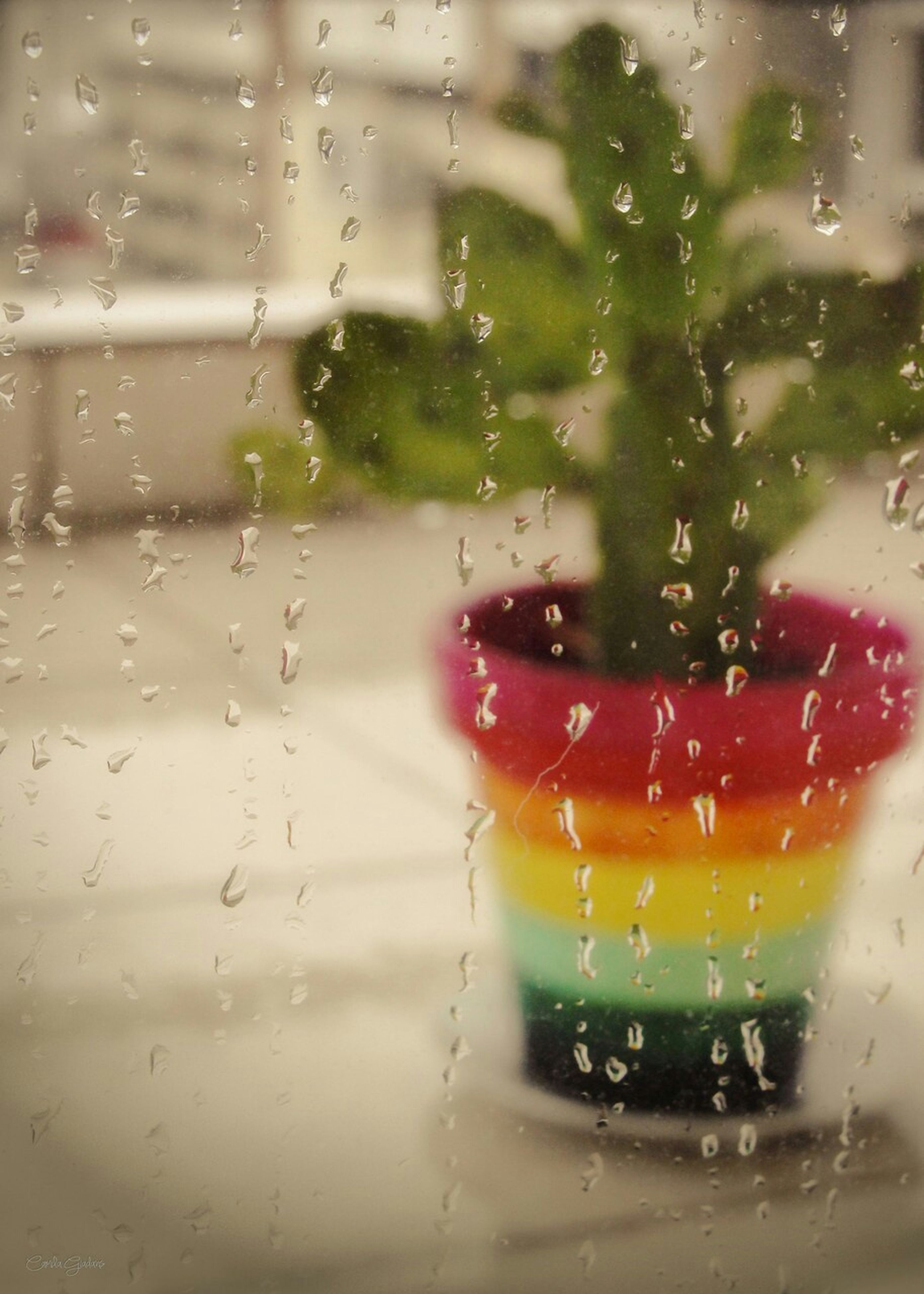 drop, wet, window, transparent, glass - material, indoors, rain, focus on foreground, water, close-up, car, transportation, raindrop, land vehicle, glass, weather, mode of transport, vehicle interior, red, season