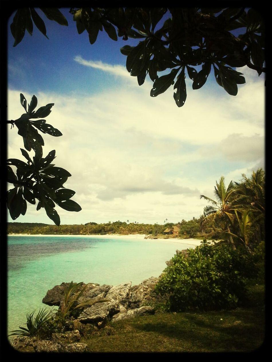 Life Is A Beach Beach Lifou Beach