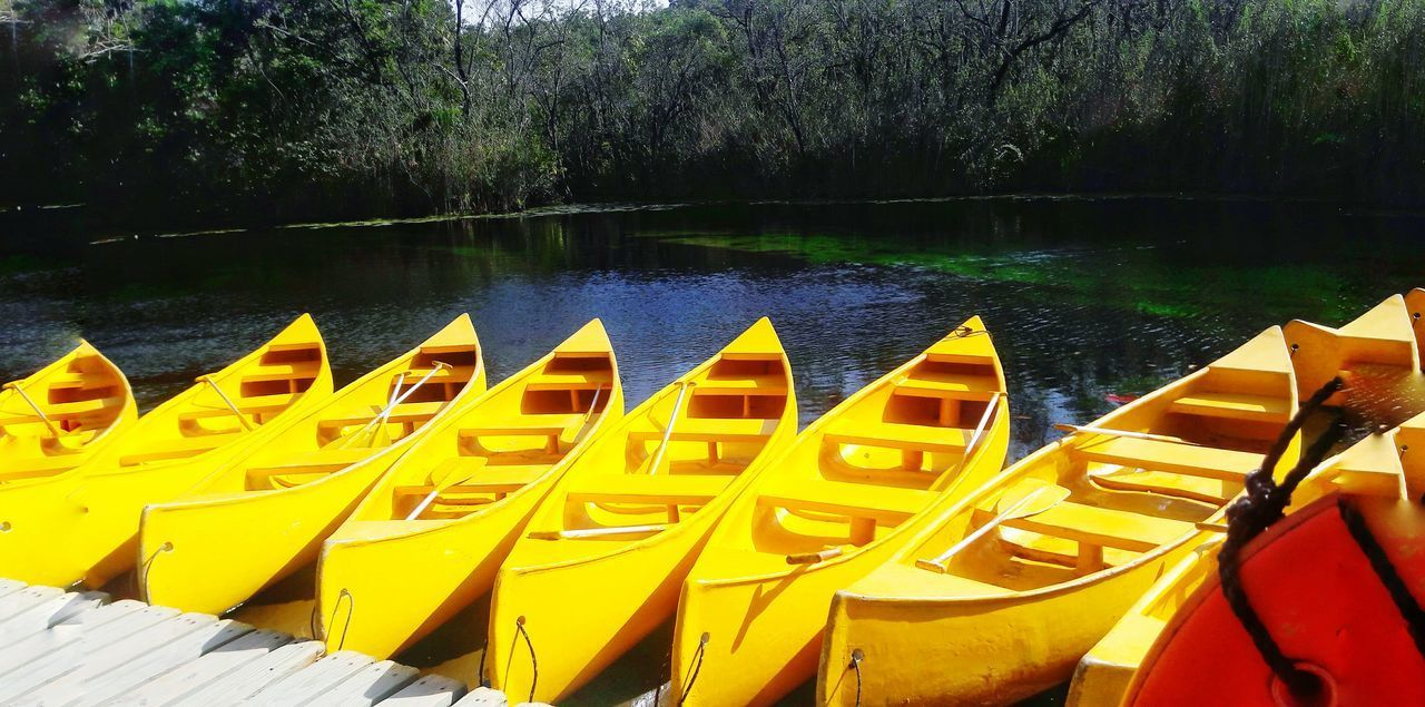 Lake Nature Yellow Water Kayak Cenotes Outdoors EyeEmNewHere