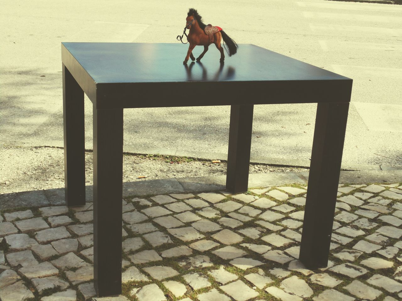 How I See My World Toy Photography Horse Toy Black Table Table Outdoors Zebra Crossing Asfalt Horse Getting Inspired Getting Creative Check This Out Hanging Out