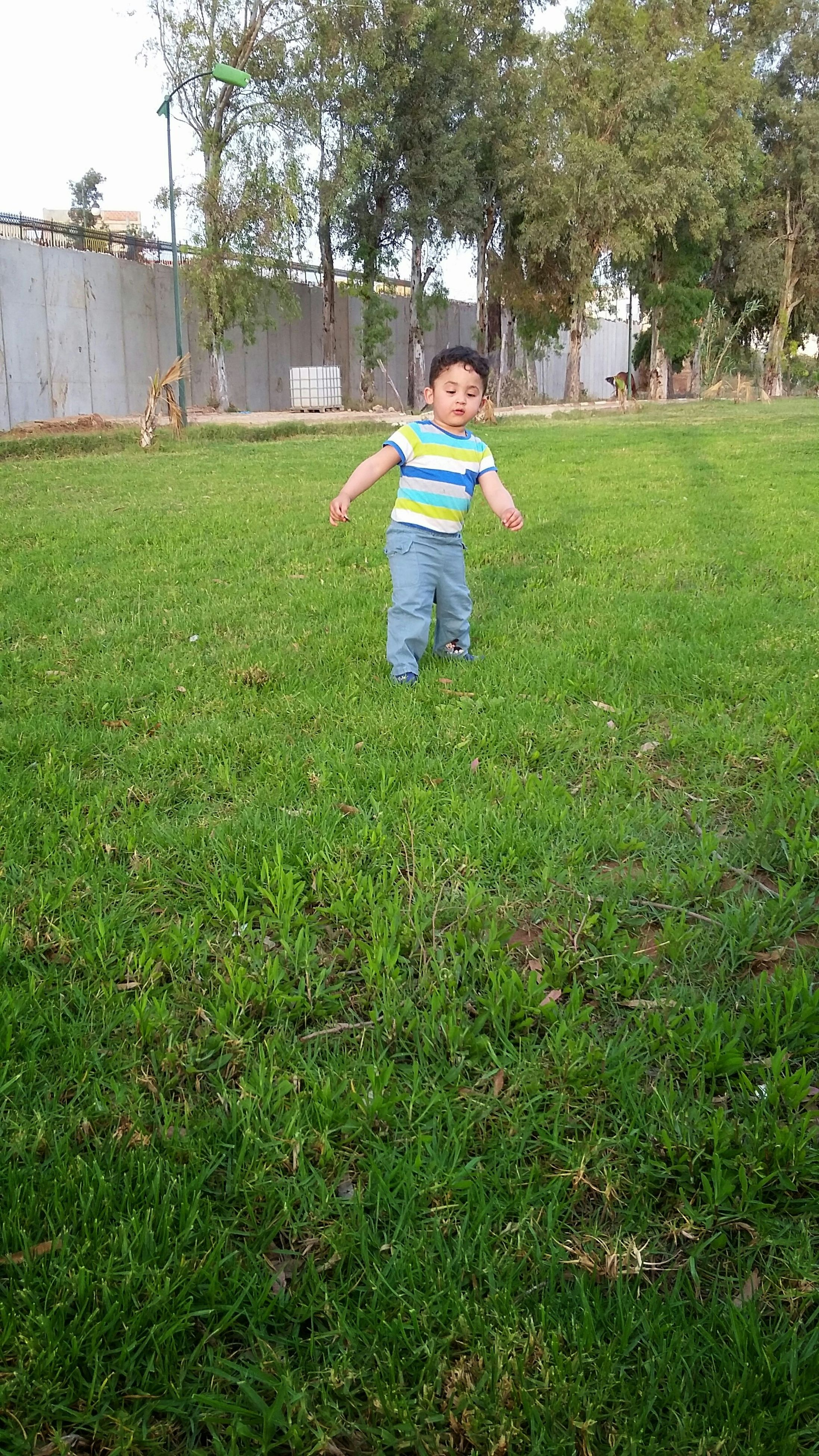 grass, field, green color, grassy, childhood, lifestyles, leisure activity, full length, lawn, casual clothing, growth, person, park - man made space, built structure, tree, boys, day, plant