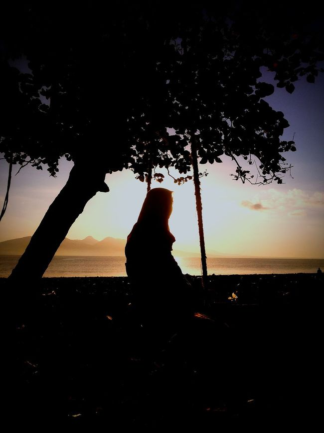 Silhouette Sea Tree Sitting Horizon Over Water Beauty In Nature