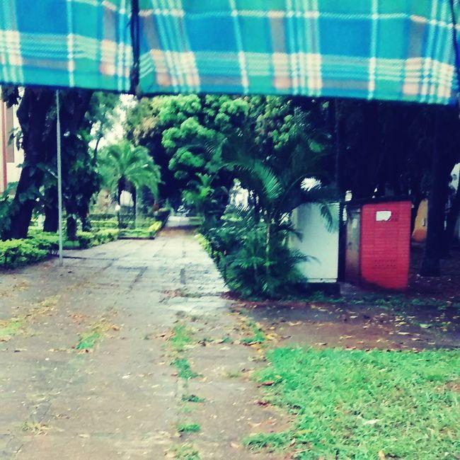☔⛄❄ Hi! Rain ♥ Rainy Days Umbrella @bsb City Bsb The Human Condition Cold Days Wheather