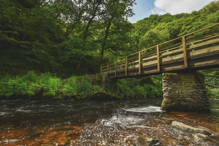 The East Lyn river and Hoar Oak Water meet at Watersmeet and flows down to the Bristol Channel at Lynmouth. Beauty In Nature Devon Devon UK Flowing Water Footbridge Forest Keith Morgan Lynmouth Nature North Devon Rocks Tranquil Scene Trees Waterfall Watersmeet