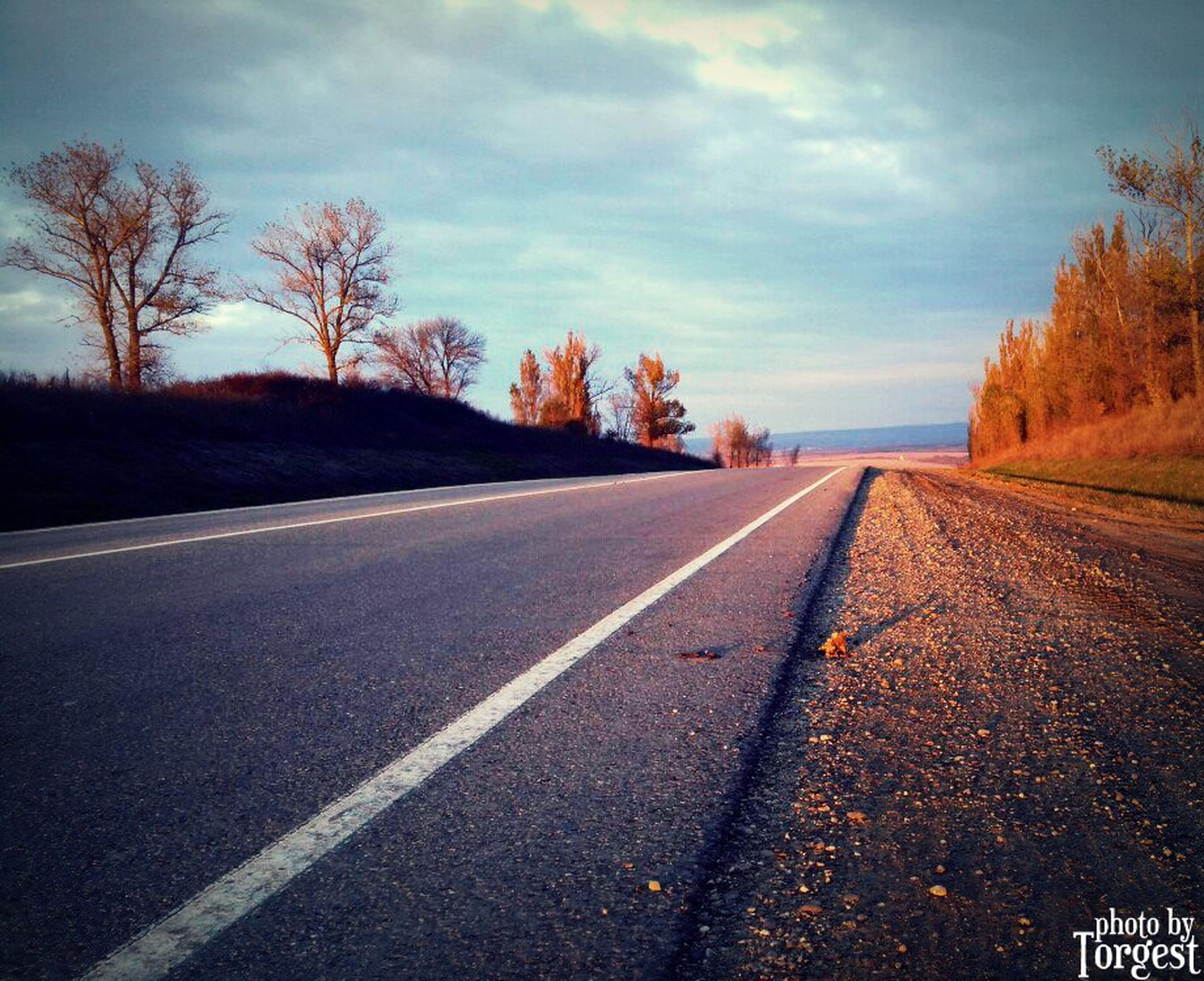 road, sky, tree, the way forward, transportation, no people, nature, outdoors, cloud - sky, asphalt, scenics, day, tranquil scene, landscape, beauty in nature