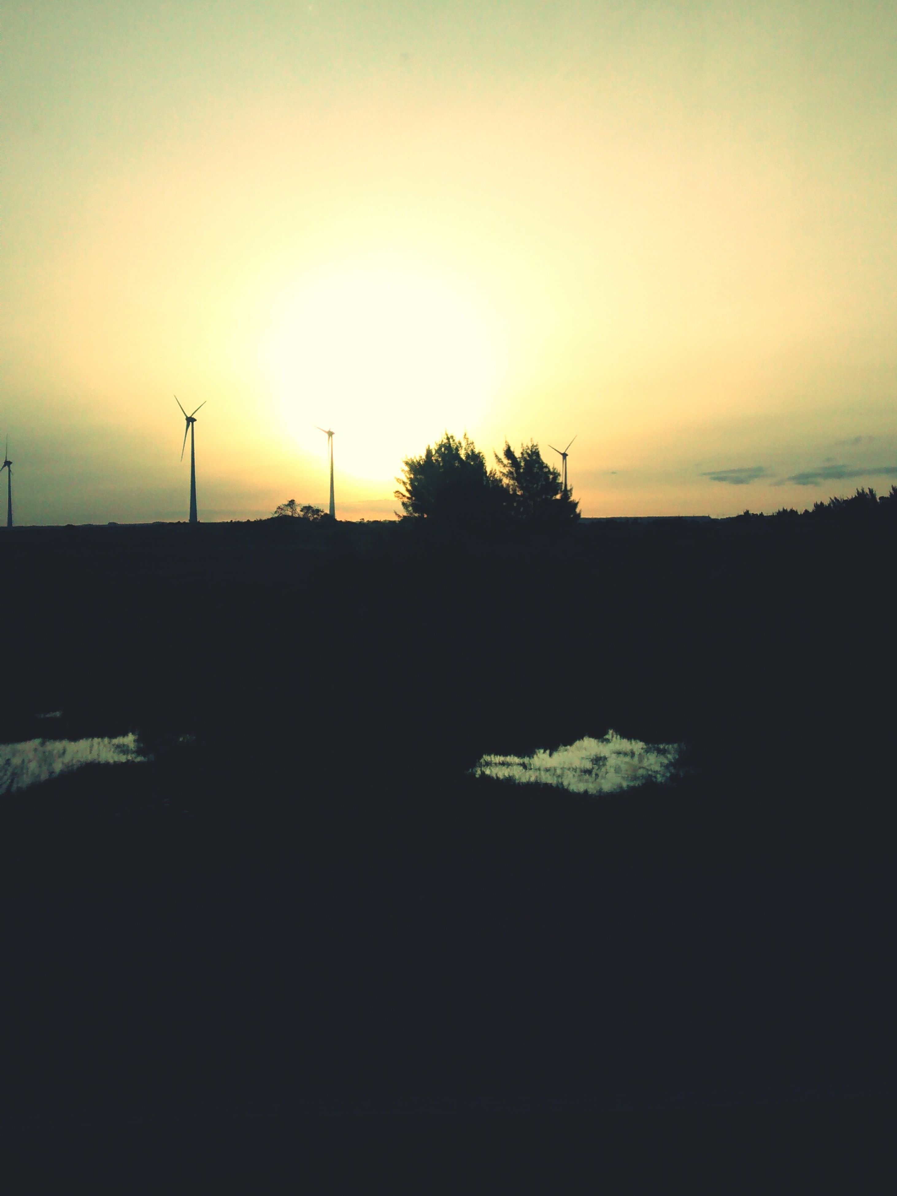 sunset, landscape, silhouette, tranquil scene, sky, tranquility, scenics, field, beauty in nature, nature, orange color, rural scene, idyllic, tree, copy space, dusk, sun, horizon over land, outdoors, no people