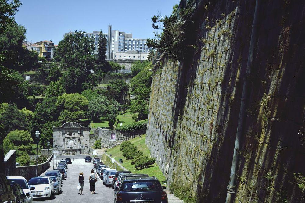 🌀 Taking Photos Relaxing Nature Natural Park Porto