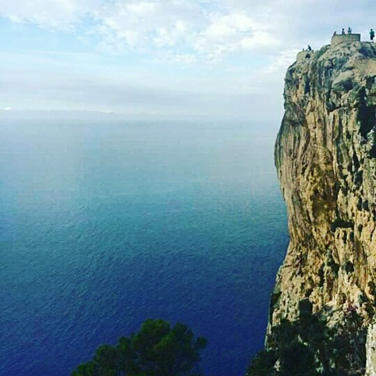 Sea Cloud Cliff Edge Cliffside Cliffs And Sea Capdeformentor Mallorca Explore Tourist Attraction  High Rock - Object Watchtower Rock Face Trees Vantagepoint Viewpoint Breathtaking Scary Vertigo