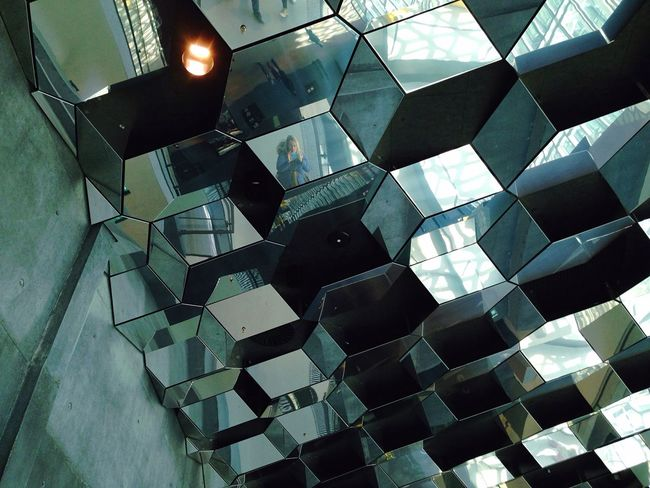 That's Me Mirror Picture The Architect - 2016 EyeEm Awards Iceland Architecture Harpa Reykjavik