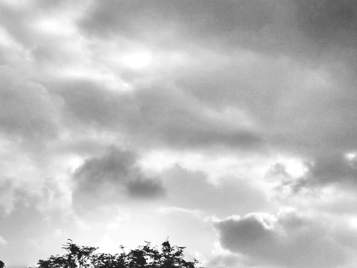 Todays clicks from my homes backyard..black clouds *-* Taking Photos Relaxing Black And White Photography Sky And Clouds Randomshot Trees