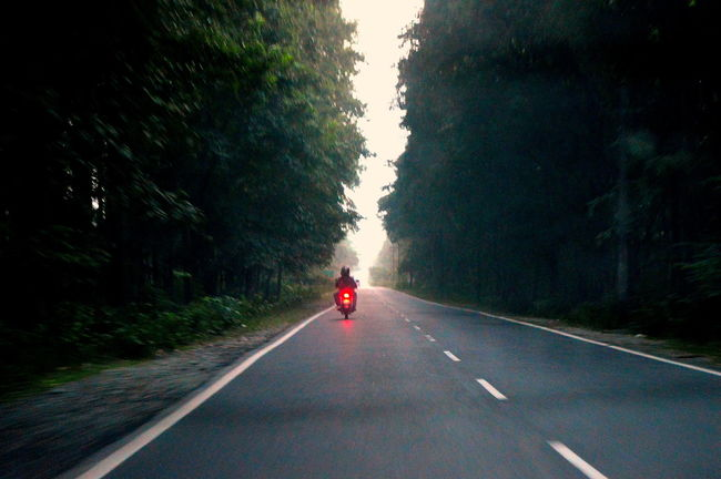 Country Road Day Diminishing Perspective Empty India Indiapictures Lifestyles Mode Of Transport Nature North Bengal On The Move Outdoors Road Road Marking Sevoke Siliguri Sky The Way Forward Transportation Tree Vanishing Point