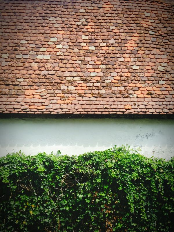Old Old Buildings Roof Patterns Textures And Surfaces Texturestyles Pattern Red White And Green
