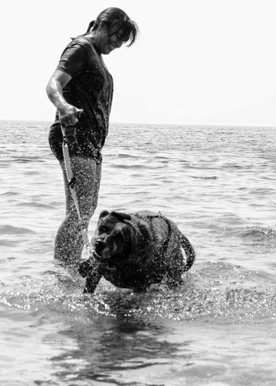Summer Dogs Maggie and Alyson Dog Beach Black And White